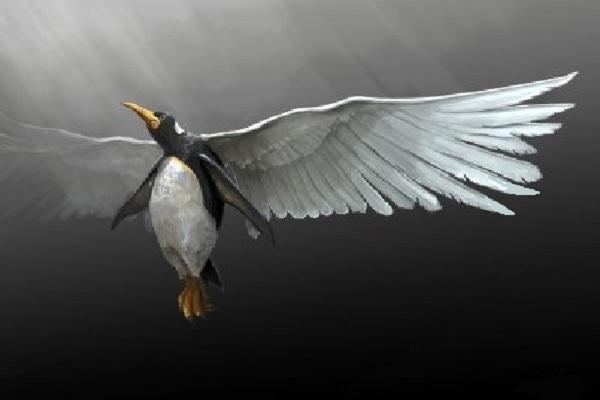 La leyenda del Pingüino