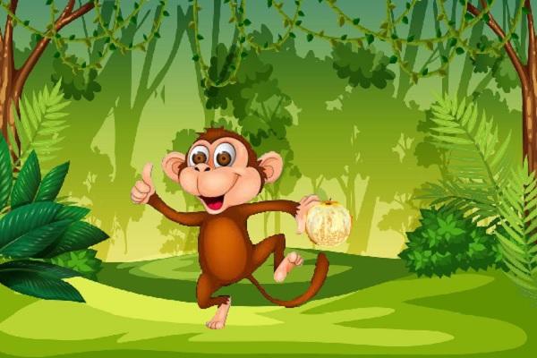 El mono y la dulce naranja