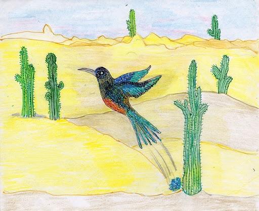 El origen del colibrí