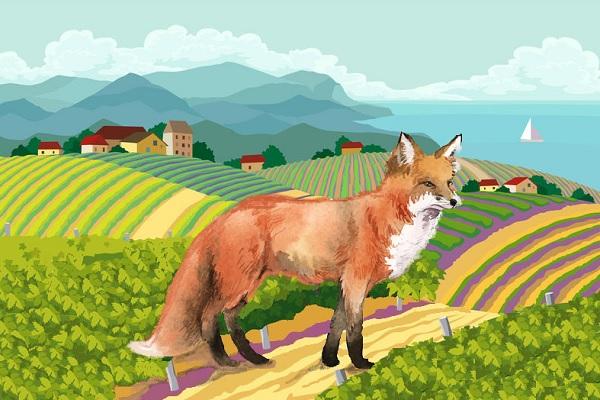 El zorro y las uvas